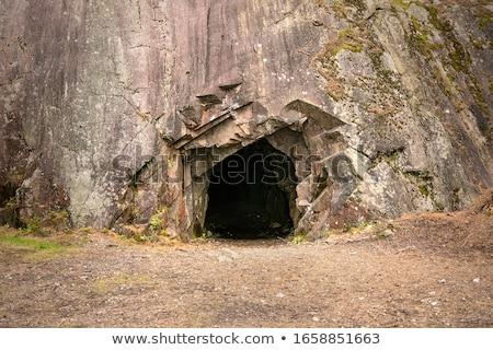 Grotte entrée extérieur coup arbre Photo stock © prill