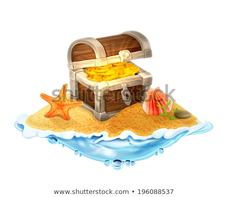 seashells and treasure chest stock photo © brebca