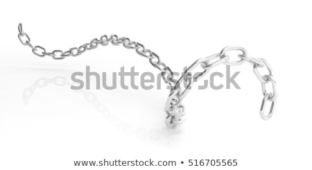 metallic chain on white stock photo © perysty