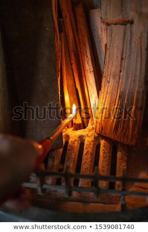 Fireplace lighter Stock photo © Stocksnapper