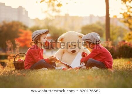 Cute piccolo ragazzo lettura picnic famiglia Foto d'archivio © wavebreak_media