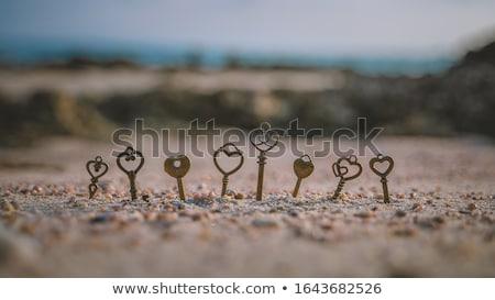 vieux · clé · sable · métal - photo stock © raywoo