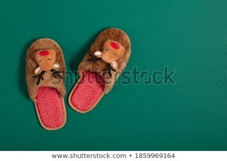 home slippers, Christmas Stock photo © Tatik22