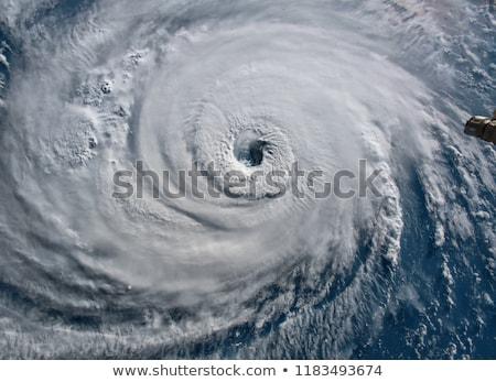 Orkaan vector kunst illustratie natuur landschap Stockfoto © robertosch