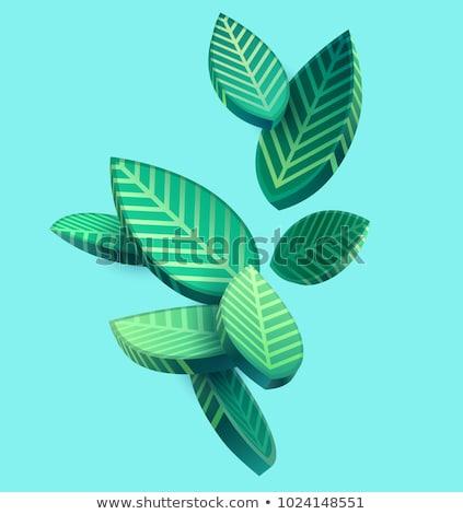 3D графических бизнеса аннотация фон зеленый Сток-фото © Elisanth