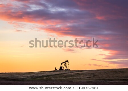American Oil Industry Stock photo © Lightsource