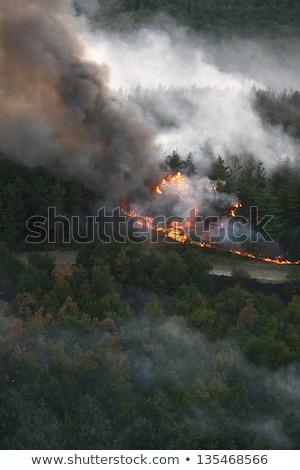 Ognia lasu wildfire śmigłowca drewna świetle Zdjęcia stock © nemar974