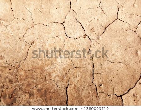 Dry Cracked Desert Floor Stock photo © ArenaCreative