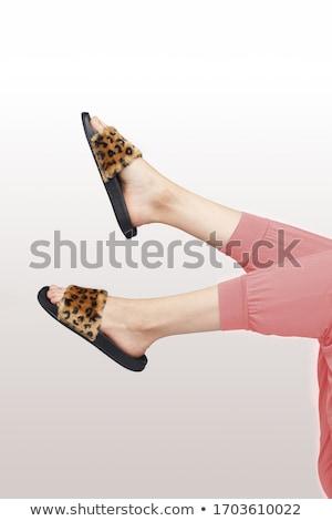 Leopárd házi cipők feketefehér fa asztal divat otthon Stock fotó © Koufax73