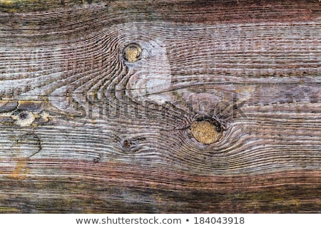 rough wooden plank visible discoloration knots Stock photo © fotoaloja