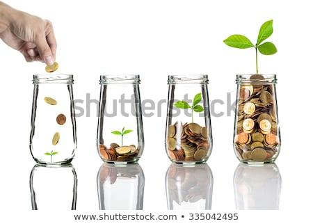 Pénzügyi tervezés üzlet csoport ceruzák dollárjel metafora Stock fotó © Lightsource