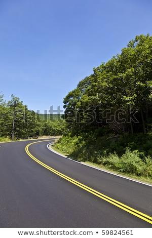 Gyönyörű festői vidéki út hajlatok természet utca Stock fotó © meinzahn