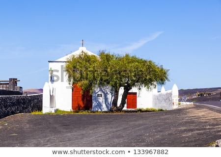 Landscape La Geria in Lanzarote, a Wine area on volcanic ashh Stock photo © meinzahn