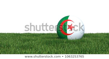 Soccer ball with Algeria flag on pitch Stock photo © stevanovicigor