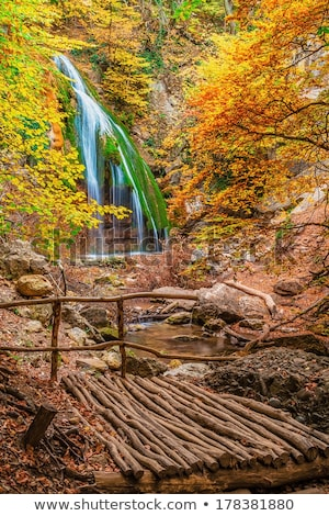 Wooden bridge at the waterfall Jur-Jur. Ukraine. Crimea. Stock photo © Hermione