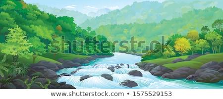 çayır orman nehir güneşli öğleden sonra çim Stok fotoğraf © butenkow
