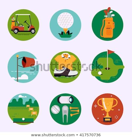 golfozó · klub · ködös · nap · golfpálya · sport - stock fotó © arenacreative