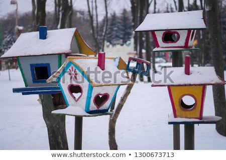 madár · tél · etetés · étel · természet · kert - stock fotó © manfredxy