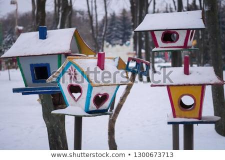 Blu Tit Bird at a Nest Box Stock photo © manfredxy