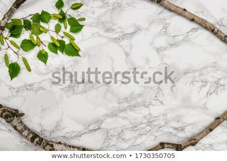 Natural stone surface stock photo © Ximinez