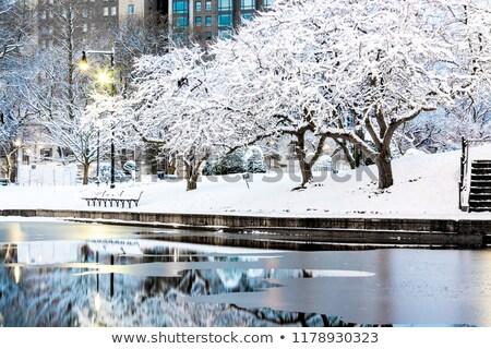 Sneeuw stedelijke park stream brug stad Stockfoto © wxin