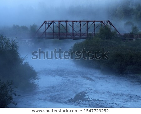 congelada · Ucrânia · enferrujado · ponte - foto stock © joyr