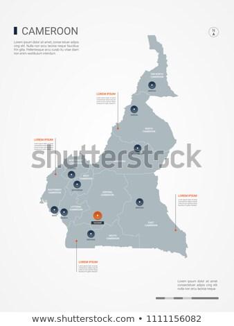 Pomarańczowy przycisk obraz mapy Kamerun formularza Zdjęcia stock © mayboro
