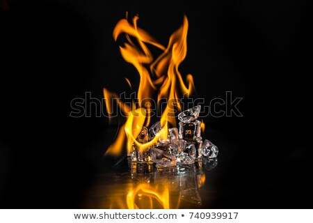 Burning ice cube stock photo © pixpack
