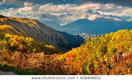ősz Grúzia békés jelenet folyik folyó Stock fotó © Taigi