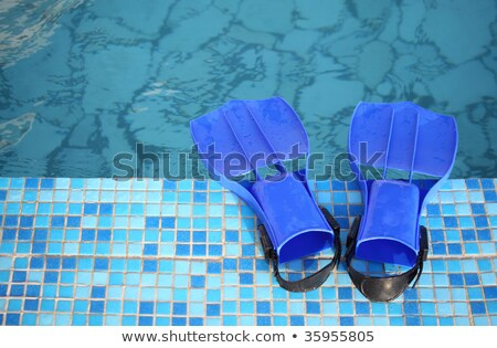 flippers on the brink of pool Stock photo © Paha_L