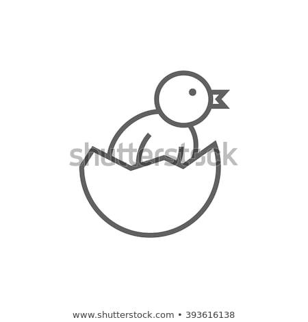 chick peeking out of egg shell line icon stock photo © rastudio