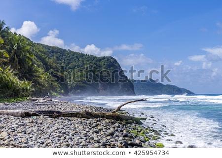 Cênico oceano paisagem Dominica enorme ondas Foto stock © meinzahn
