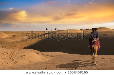 couple of indians in the desert stock photo © adrenalina