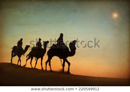 üç bilge erkekler çöl gün batımı örnek Stok fotoğraf © adrenalina