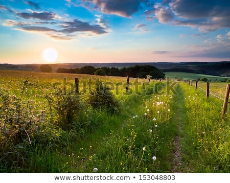 sunrise in german countryside with hills in the Eifel Stock photo © meinzahn