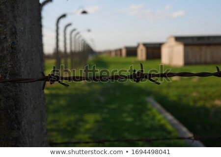 Auschwitz Birkenau concentration camp. Stock photo © FER737NG