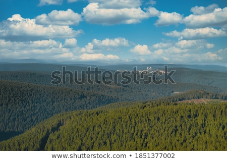 scenic panorama of forest in Thuringia Stock photo © meinzahn