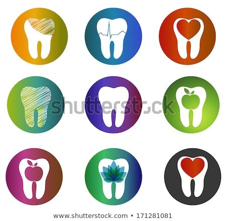 巨大な コレクション 美しい 歯科 シンボル ストックフォト © Tefi