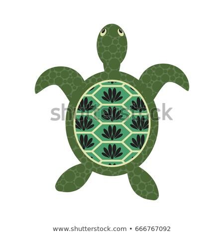 Turtle Cartoon Vector With Decorated Tortoiseshell Stock fotó © YoPixArt