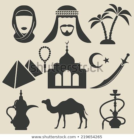Arab emberek tevék piramisok illusztráció háttér Stock fotó © bluering