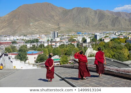 Buddhist monks walking down the street Stock photo © MikhailMishchenko