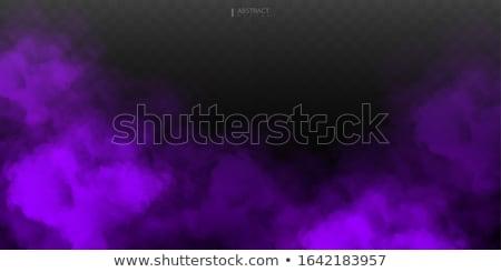 Purple Mist Stock photo © craig