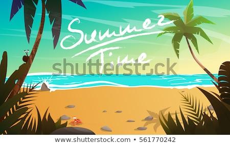 zomertijd · strand · palmen · planten · vector · zomervakantie - stockfoto © Natali_Brill