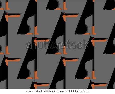 Doberman pattern senza soluzione di continuità cane pet ornamento Foto d'archivio © MaryValery