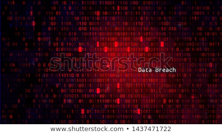 ransomware and code hacking background stock photo © solarseven