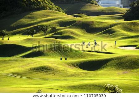 Jogador de golfe bola feminino golfball grama Foto stock © Kzenon