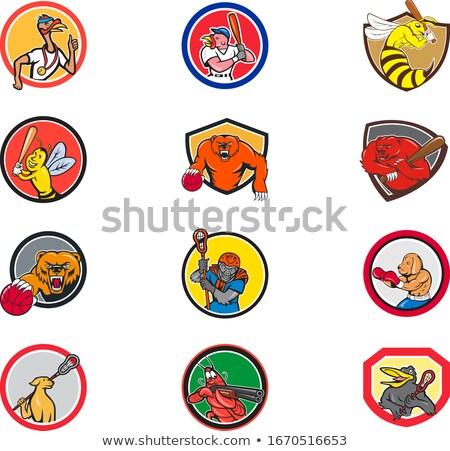Lacrosse and Baseball Sports Mascot Collection Stock photo © patrimonio