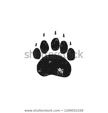 bear footprint wild animal paw in silhouette style black grizzly foot icon stock vector isolated stock photo © jeksongraphics