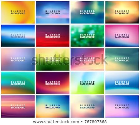 BIG set of 20 horizontal wide blurred nature backgrounds Stock photo © MarySan