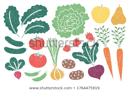 Green Peas and Strawberries vector Illustration Stock photo © robuart